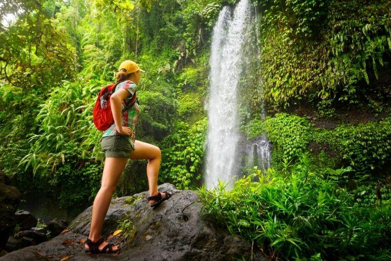 Bosque Carite Rainforest, Puerto Rico