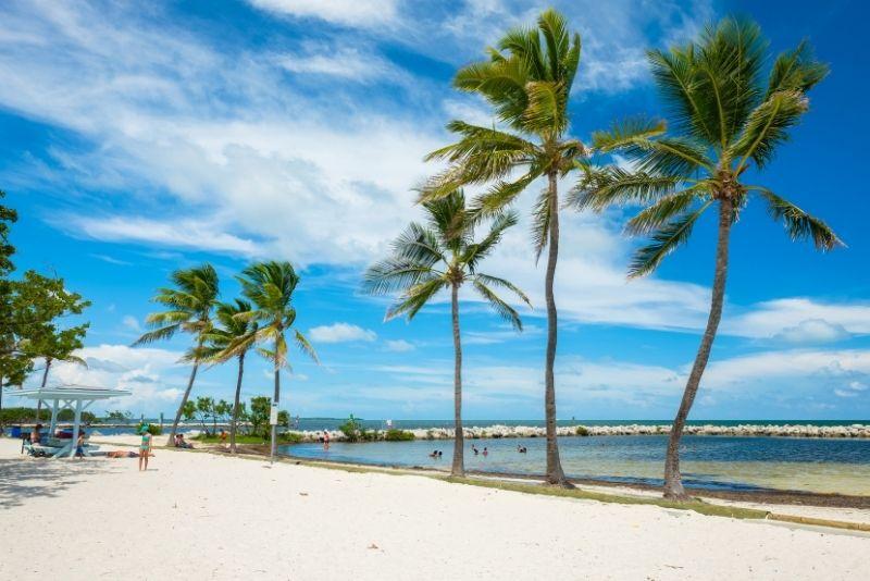 Harry Harris Park and Beach, Key Largo