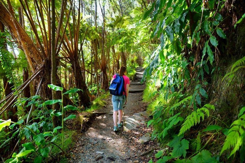Kilauea Iki Trail in Hawaii Volcanoes National Park