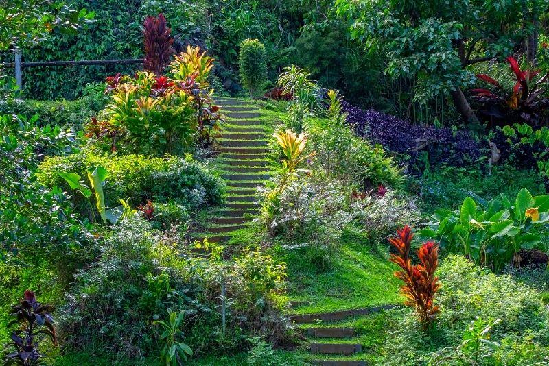 Princeville Botanical Gardens, Kauai