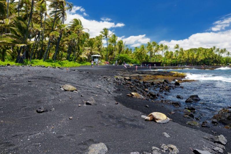 Punaluʻu Beach, Big Island