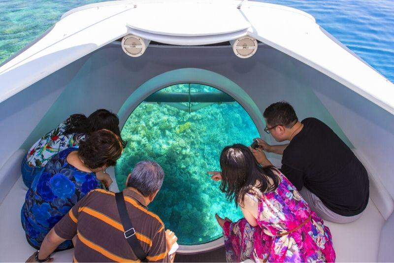 glass bottom boat tours in Key Largo