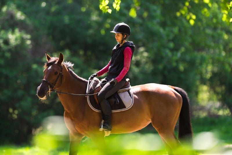 horse riding on the Big Island, Hawaii