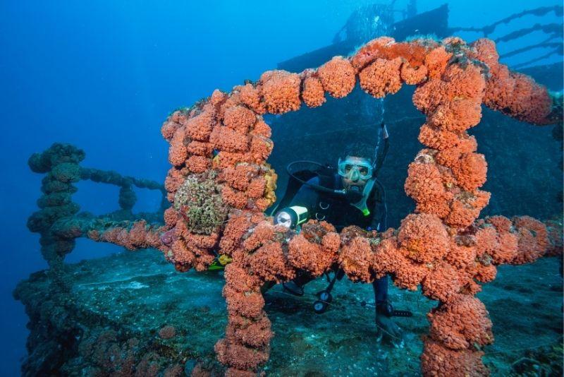 scuba diving in Key Largo