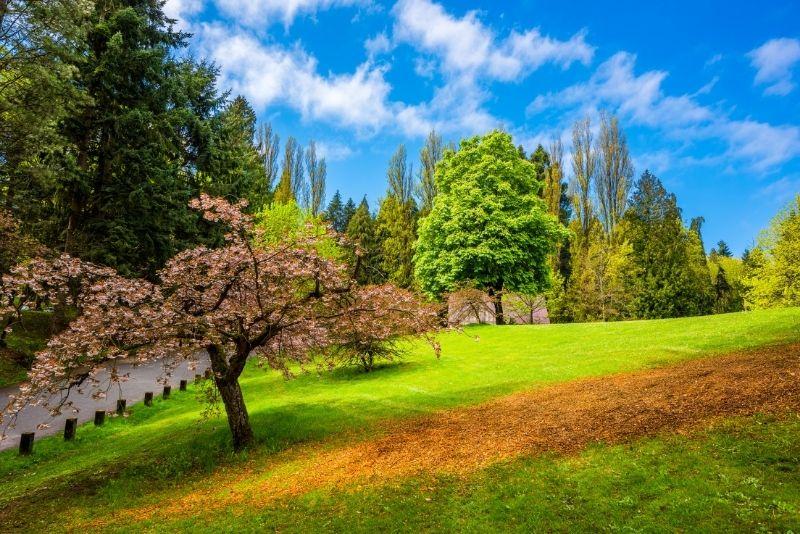 Green Lake Park, Seattle