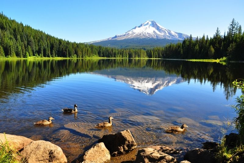 Mount Hood, Portland, Oregon