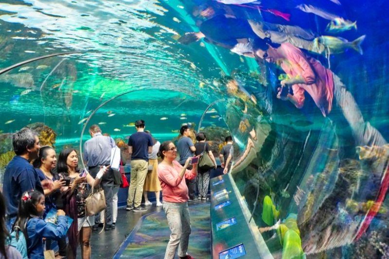 Ripley's Aquarium of Canada, Toronto