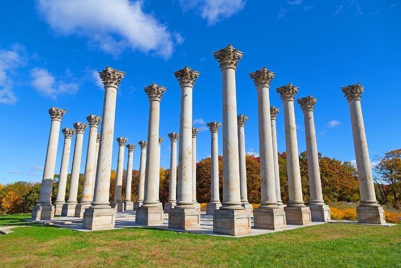United States National Arboretum, Washington DC
