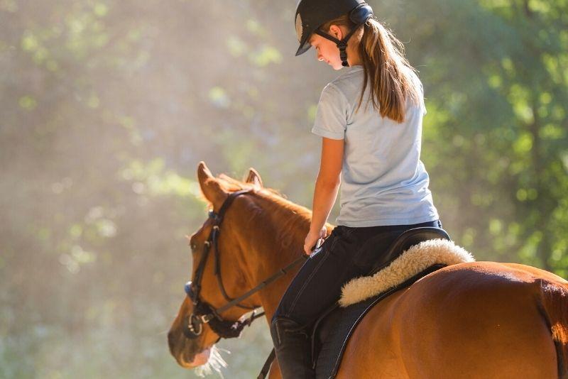 horse riding near Boston