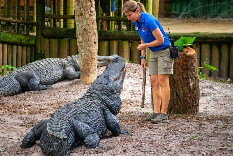 Alligator Farm Zoological Park, St Augustine