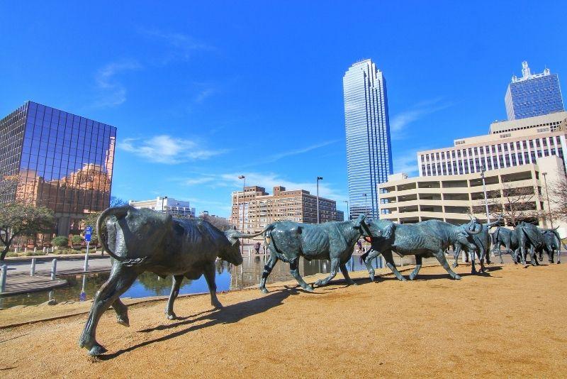 Cattle Drive Sculptures, Dallas