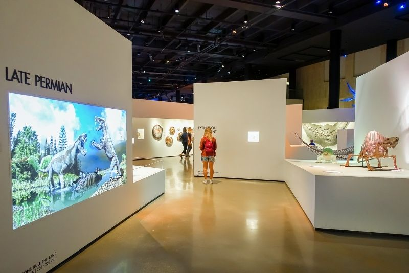 Houston Museum of Natural Science, Texas