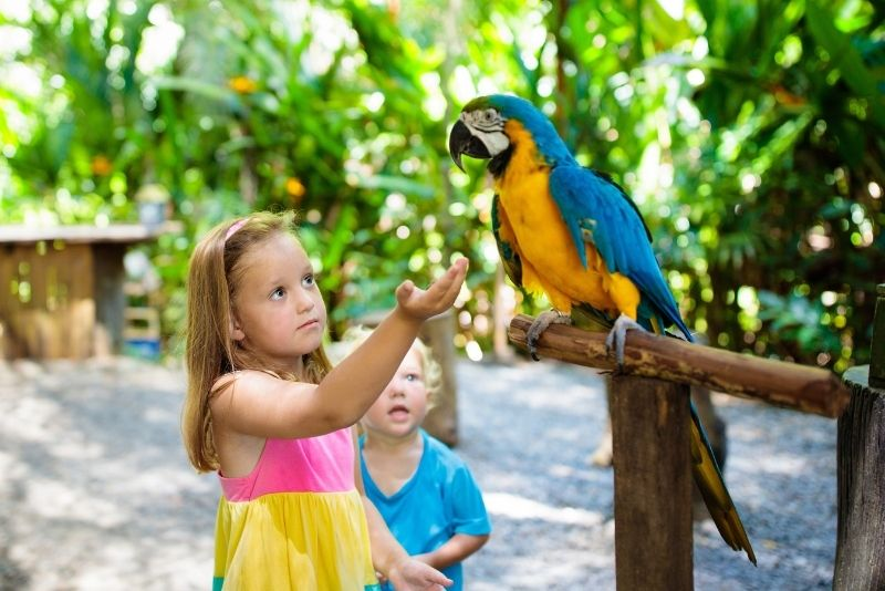 Memphis Zoo, Memphis