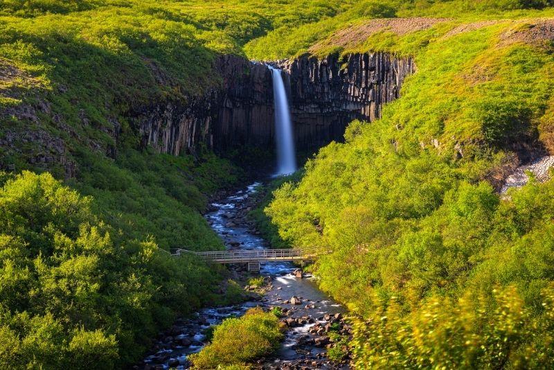 Skaftafell Naturschutzgebiet in Island