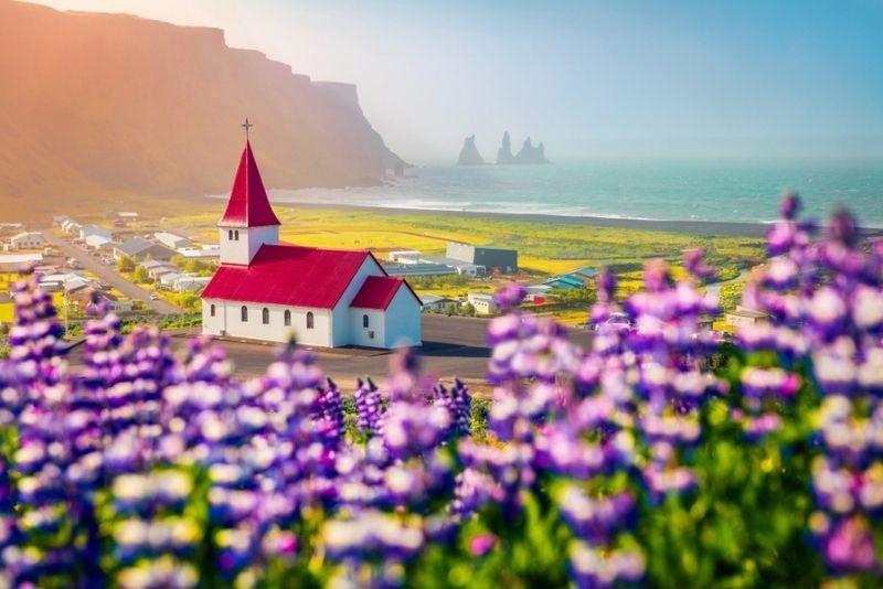 Tour della costa meridionale, Islanda