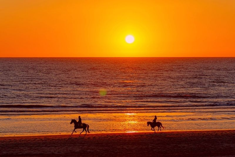 horse riding in Myrtle Beach