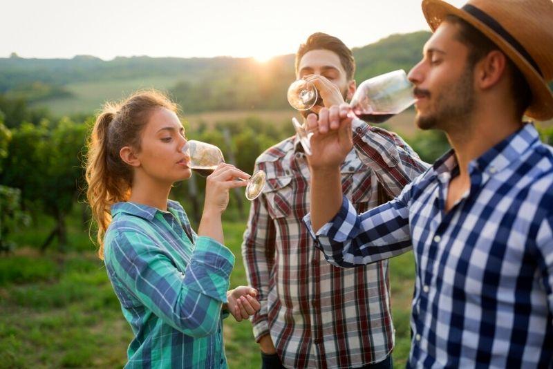 wine tastings in Budapest
