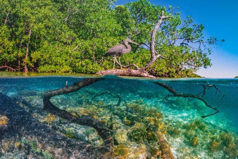Bonefish Pond National Park in Nassau