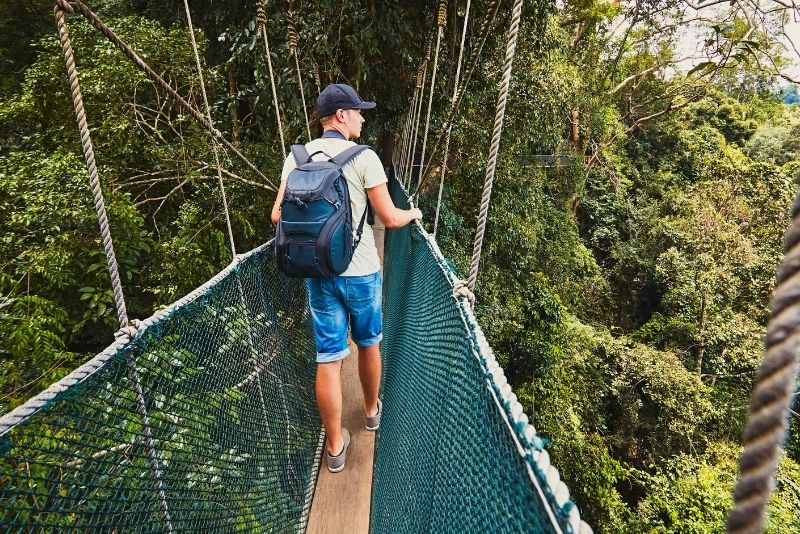 Canopy walk at Treetop Adventure Park, St Lucia