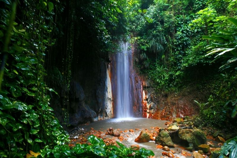 Diamond Falls Botanical Gardens, St Lucia