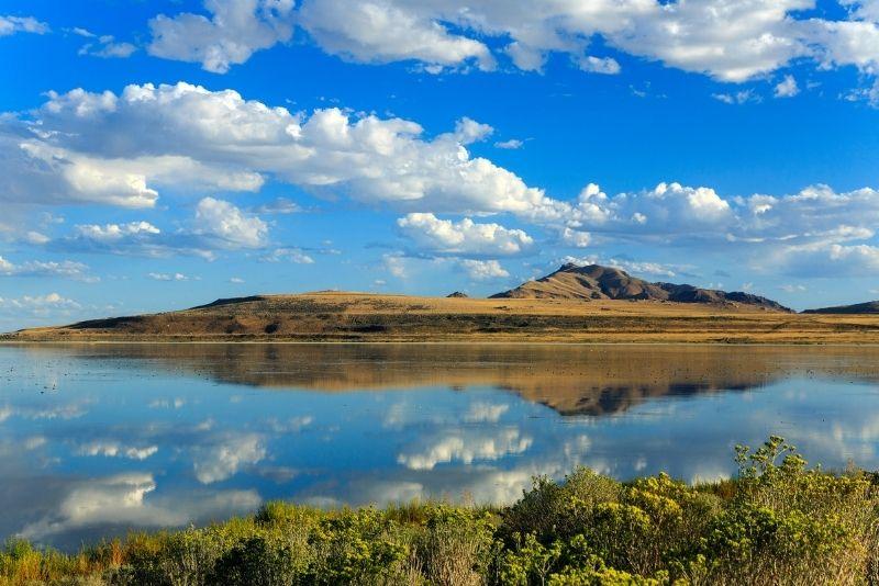 Great Salt Lake, Utah 1