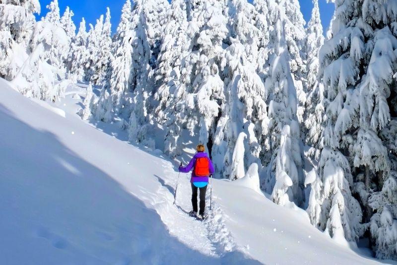 Mount Mamquam, Vancouver