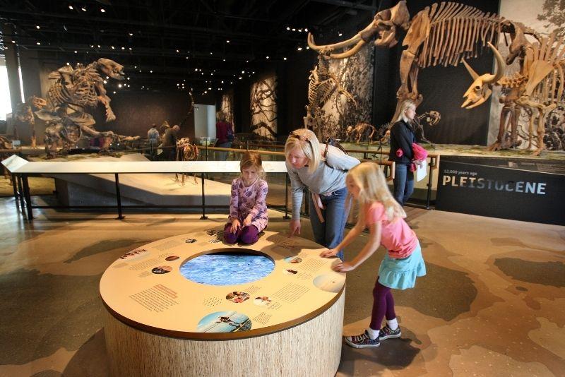 Natural History Museum of Utah, Salt Lake City
