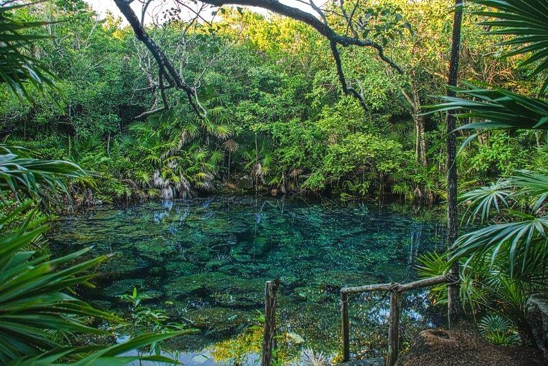 Tankah Cenotes Park, Mexico