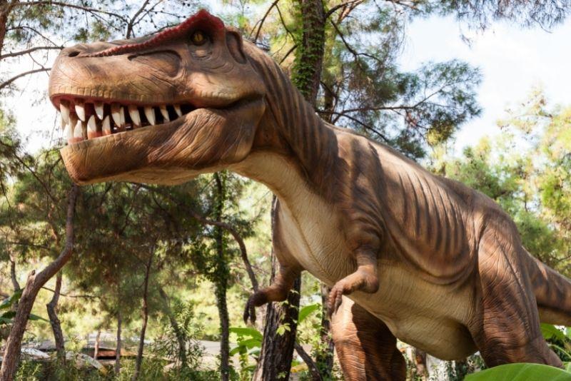 The Dinosaur Park, Austin