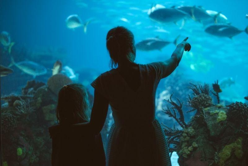 Vancouver Aquarium, Canada