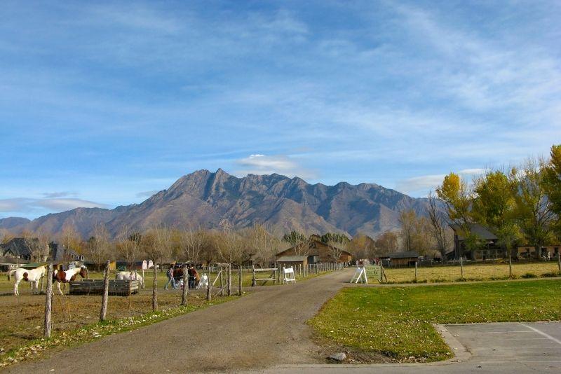 Wheeler Historic Farm, Salt Lake City