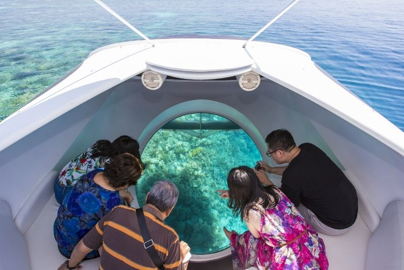 boat tours in Cabo San Lucas