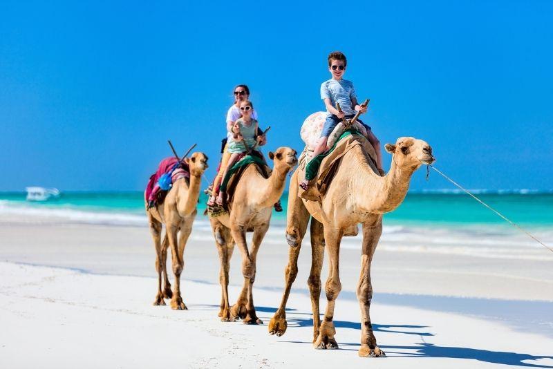 Kamelreiten in Playa del Carmen