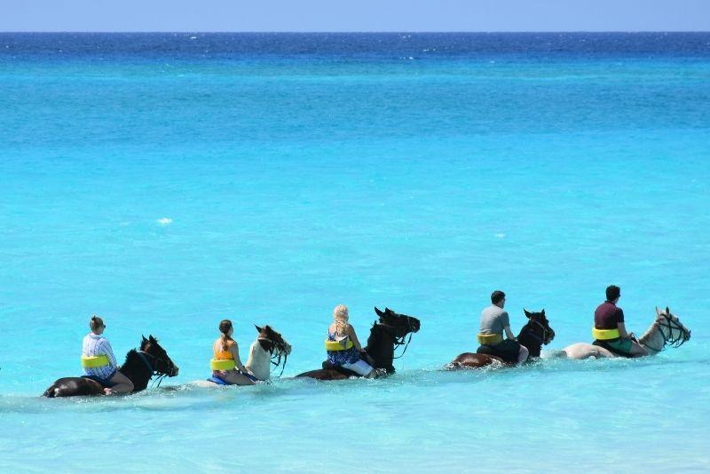 horse riding in Jamaica