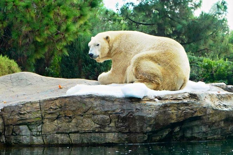 Alaska Zoo in Anchorage