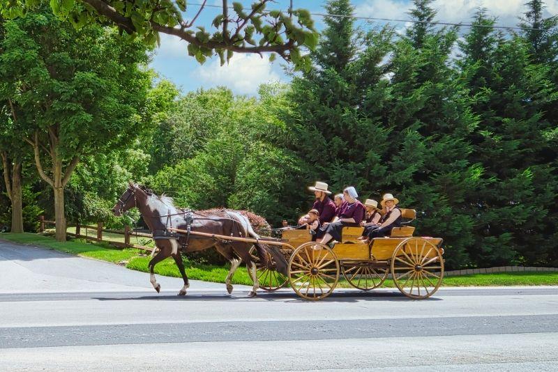 Amish experience, Sarasota
