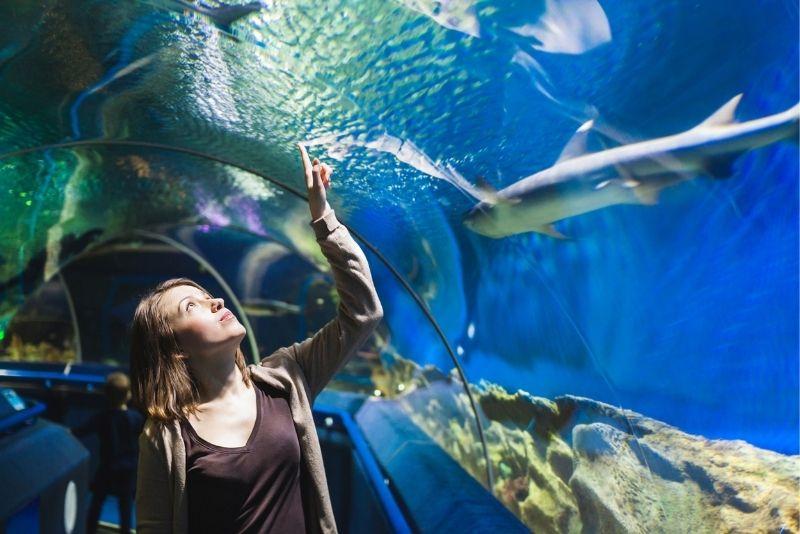 Aquarium du Quebec, Quebec City