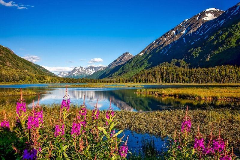 Chugach National Forest, Anchorage