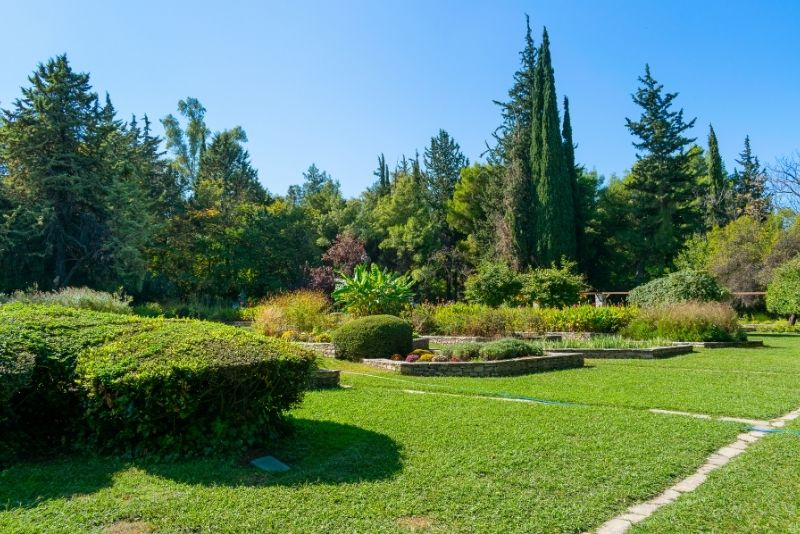 Diomedes Botanical Garden, Athens