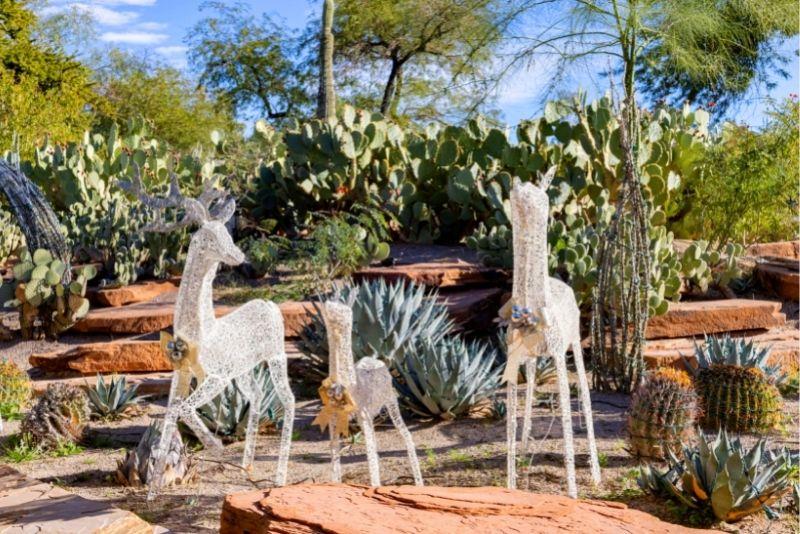 Ethel M Cactus Garden, Las Vegas