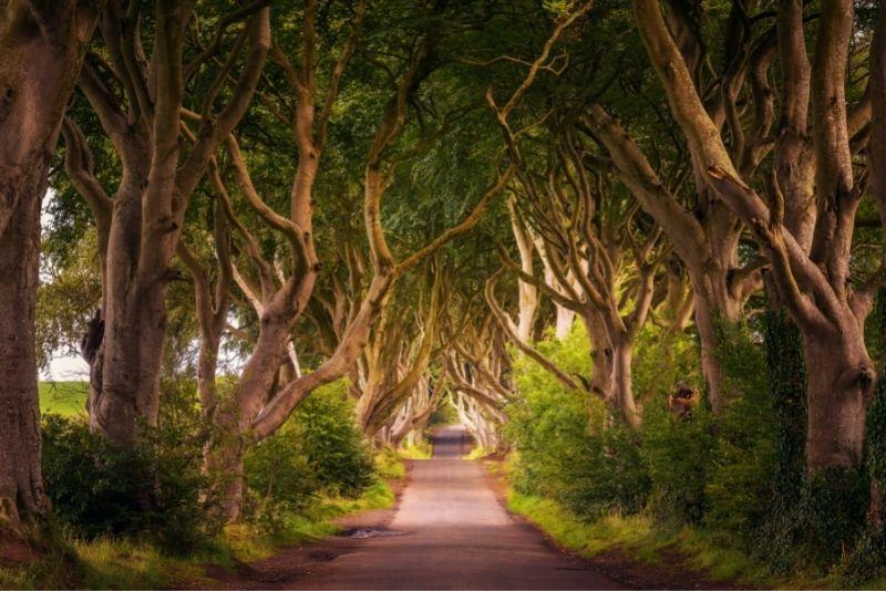 Drehorte von Game of Thrones in Dublin