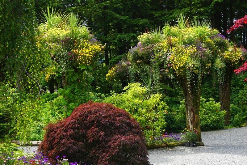 Glacier Gardens, Juneau