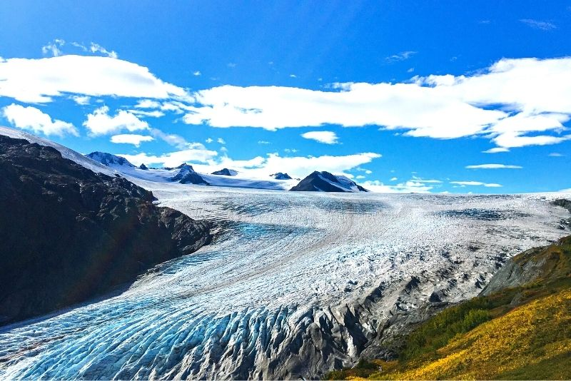 Kenai Fjords National Park in Anchorage