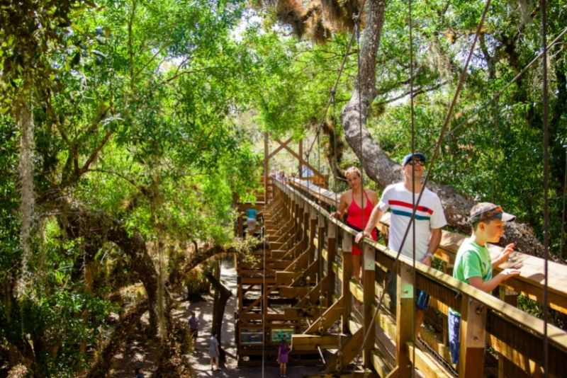 Myakka Canopy Walkway and Observation Tower, Sarasota
