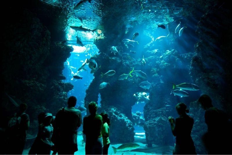 Ozeanographisches Museum, Monaco