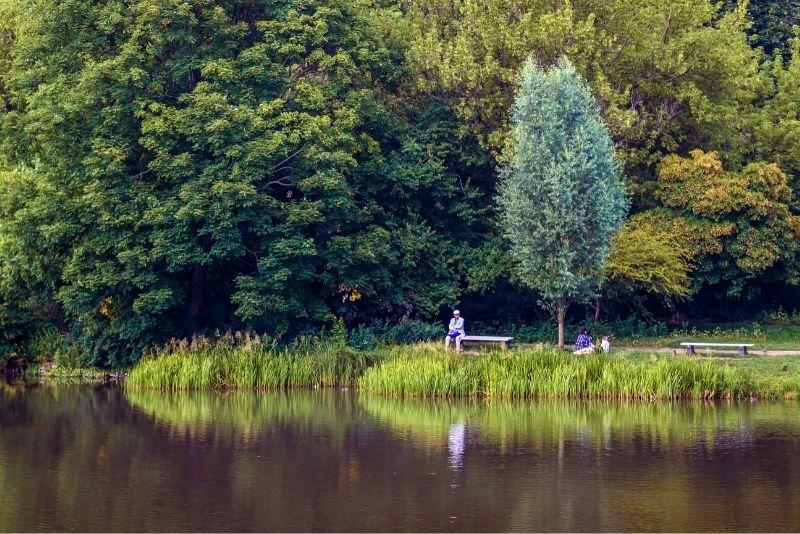 Skaryszew-Park, Warschau