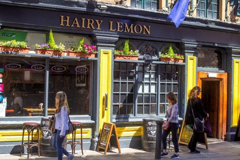 Der Hairy Lemon Pub in Dublin