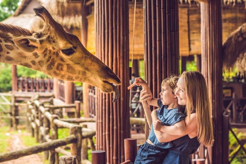 The Living Desert Zoo & Gardens, Palm Springs