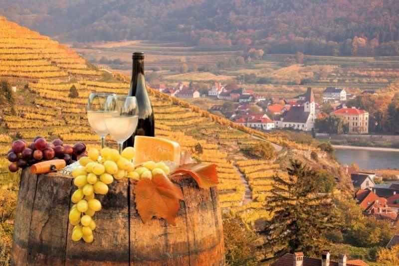 Degustazione di vini nella valle di Wachau, Vienna