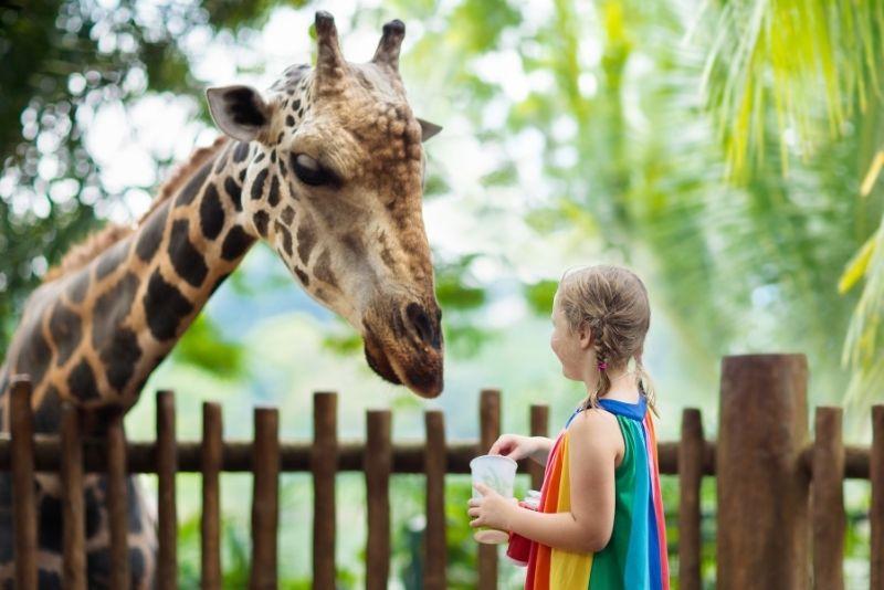 Zoo Warschau, Polen